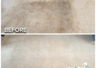 CLiCK Cleaning Sisal Rug Cleaning Before and After